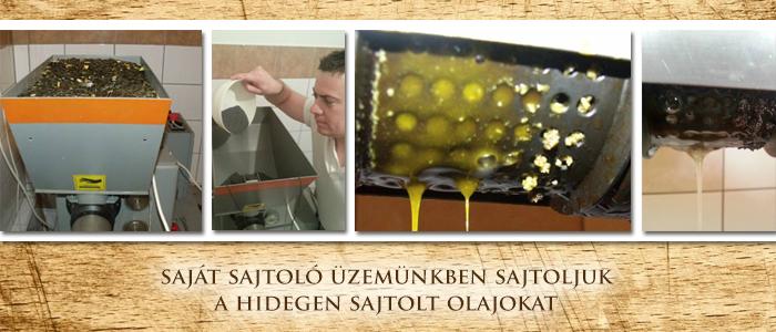 Hidegen sajtolt növényi olaj sajtolása a GastrOlaj sajtoló üzemben.